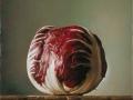 Adamo - 2012 olio su tavola cm 20x20 © Gianluca Corona